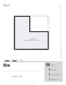950-dav-roof